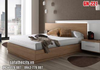 Giường Ngủ Kiểu Nhật Hiện Đại - GN221