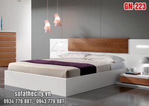 Giường Ngủ Kiểu Nhật Hiện Đại - GN223